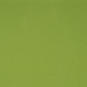 643 1351807643 CW101-Lime-Light